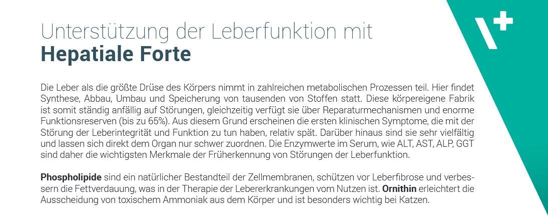 VetExpert Hepatiale Forte Leberfunktion
