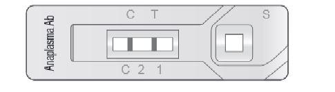 VetExpert Rapid Test FIV Ab